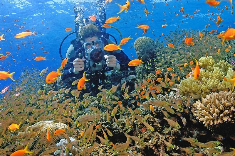 €110 – Digital Underwater Photography